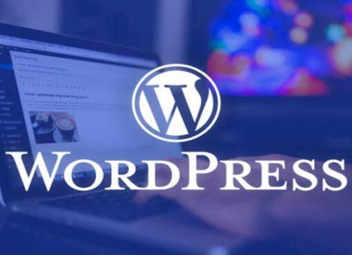 The-Complete-WordPress-Website-Business-Course-in-2020.jpg