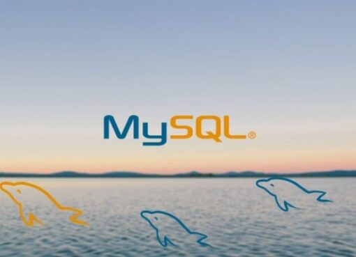 MySQL Database Training for Beginners Course – Learn MYSQL Database