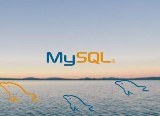 MySQL Database Training for Beginners Course – Learn MYSQL Database